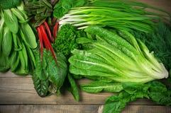 Olika lövrika grönsaker Arkivbild