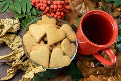 olika leaves isolerad rönnwhite för bakgrund filial Hjärtakaka svart tea Arkivfoto