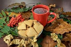 olika leaves svart tea Hjärtakaka isolerad rönnwhite för bakgrund filial Royaltyfri Bild