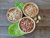 olika legumes Royaltyfri Bild