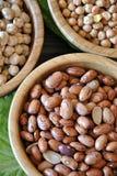 olika legumes Royaltyfria Bilder