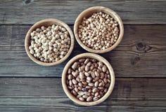 olika legumes Royaltyfri Fotografi