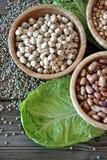 olika legumes Arkivfoto