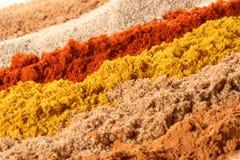 olika linjer kryddor Royaltyfria Bilder