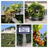 olika Loire Valley sikter Royaltyfri Foto