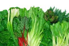 Olika lövrika grönsaker Arkivfoton