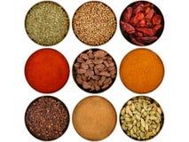 olika nio kryddor royaltyfria foton