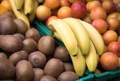 Olika nya frukter på marknaden Royaltyfri Bild