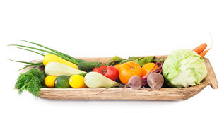 Olika nya grönsaker Royaltyfria Bilder