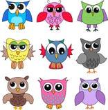 olika owls Royaltyfri Foto