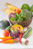 Olika rå grönsaker Royaltyfria Foton