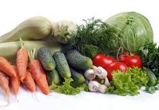 olika setgrönsaker Arkivfoto