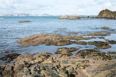 Olika sikter av en strand från en sommarsemesterort i La Coruna skäller Royaltyfria Bilder