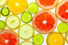 Olika skivade citrusfrukter Royaltyfri Fotografi