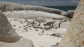 Olika skott av stenblocks strand arkivfilmer