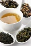 Olika slag av grönt te och koppen Arkivfoto
