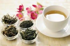 Olika slag av grönt te och koppen Royaltyfria Bilder