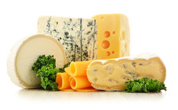 Olika slag av ost på vit bakgrund Arkivfoton