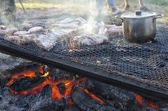 Olika snitt av köttbakning på branden Arkivbild