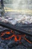 Olika snitt av köttbakning på gallret Arkivbilder