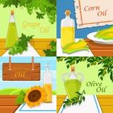 Olika sorter av ätliga grönsakmatoljor Druva-, havre-, solros- och olivoljavektorillustrationer, designbeståndsdel vektor illustrationer