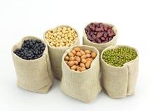 Olika sorter av bönor i säckar hänger löst på vit bakgrund arkivfoto