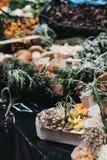Olika sorter av champinjoner på försäljning på en marknad royaltyfri bild