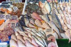 Olika sorter av den till salu fisken och räkor arkivfoton