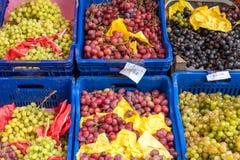 Olika sorter av druvor arkivfoton