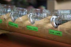Olika sorter av kaffe Royaltyfria Foton