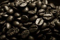 Olika sorter av kaffe på träplattan Selektivt fokusera signal Arkivbild