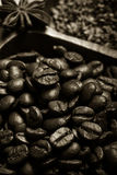 Olika sorter av kaffe på träplattan Selektivt fokusera signal Royaltyfria Bilder