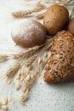 Olika sorter av kavring på vit bakgrund Hel-korn bröd med frö royaltyfri fotografi