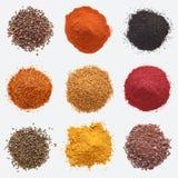 Olika sorter av kryddor på vit bakgrund royaltyfri fotografi