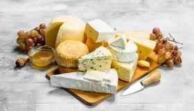 Olika sorter av ost med honung och druvor arkivfoton