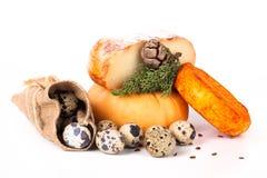 Olika sorter av ostar och vaktelägg med blad på ljusa lodisar Arkivfoto