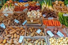 Olika sorter av potatisar och andra grönsaker arkivbilder