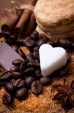 Olika sorter av socker Royaltyfri Foto