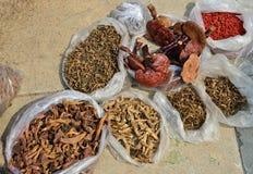 Olika sorter av traditionell kinesisk medicin Arkivbild