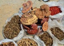 Olika sorter av traditionell kinesisk medicin Royaltyfri Fotografi