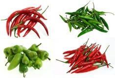olika sorter för chili Royaltyfria Foton