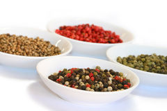 olika sorter pepprar kryddor Arkivfoto