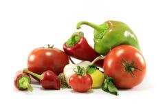 olika sortgrönsaker Royaltyfri Bild