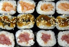 olika sushivariationer Arkivbild