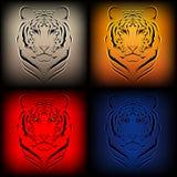 olika tigrar för färgset Royaltyfria Foton