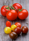 Olika tomater arkivfoto