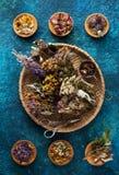 Olika torkade läka örter och blommor på en blå bakgrund royaltyfri foto