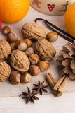 olika torkade nuts apelsinkryddor för sorter Royaltyfria Foton