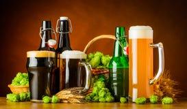 Olika typer av öl och bryggaingredienser royaltyfria foton
