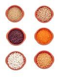 Olika typer av bönor som isoleras på vit Arkivbild